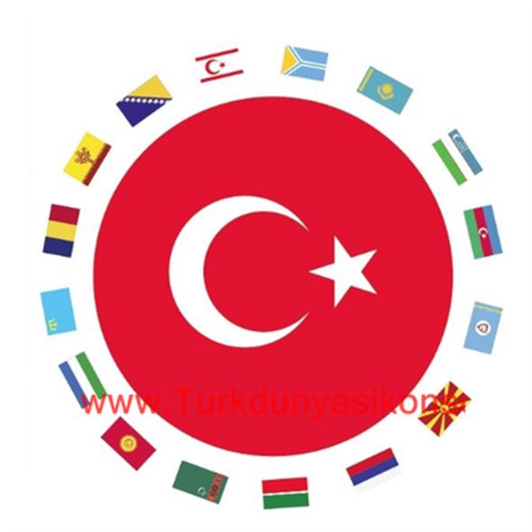 Türk Konseyinden Kovid-19'a karşı dayanışma mesajı